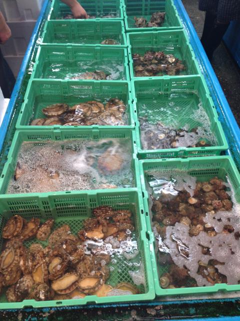 Un stand de fruits de mer au marché aux poissons de Tokyo
